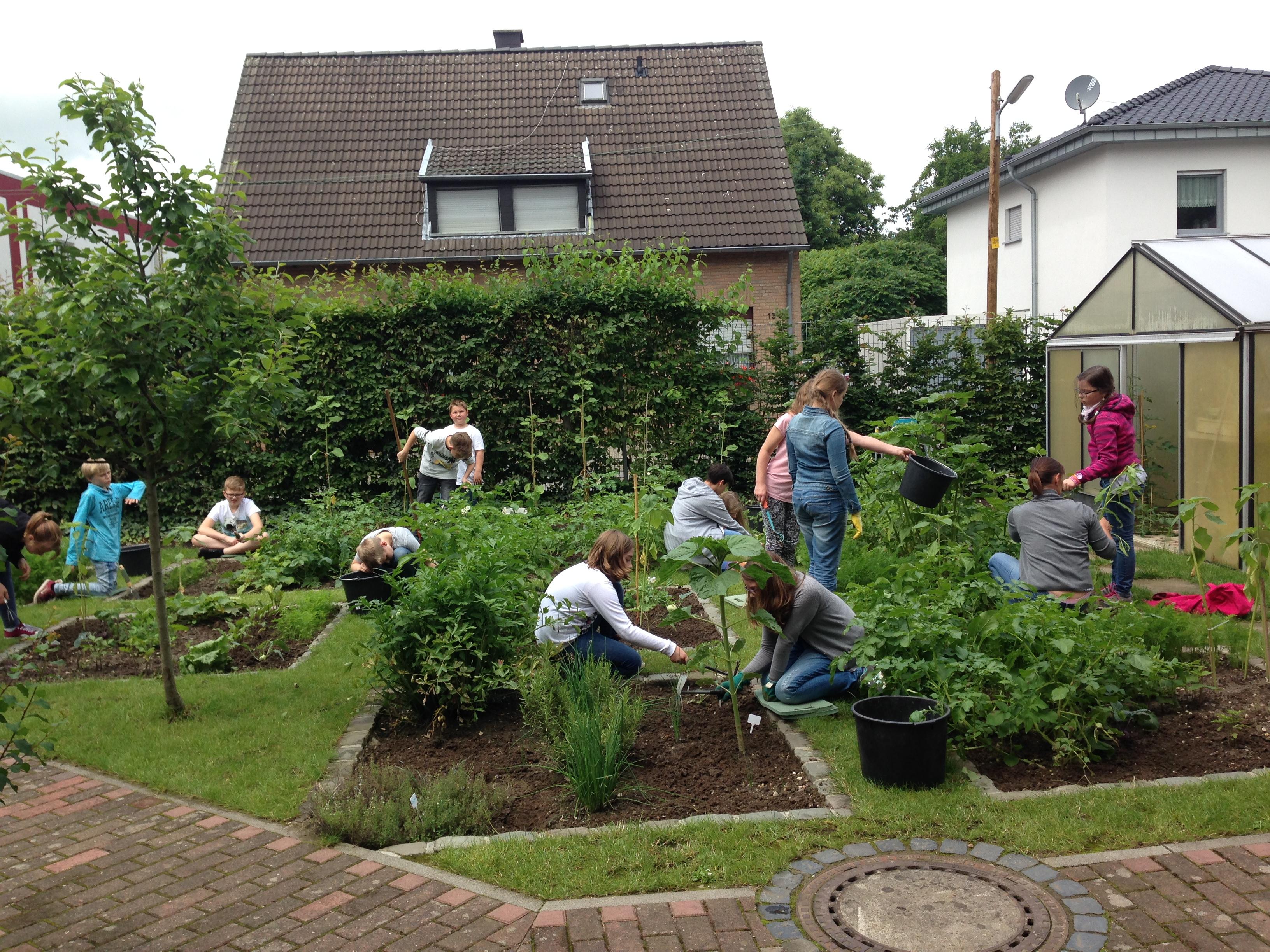 Schulgarten-AG