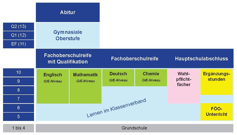 Struktur der Gesamtschule